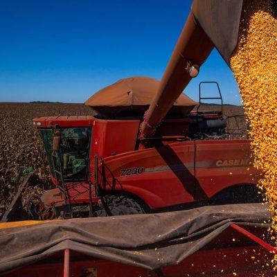Conab estima colheita de 260,8 milhões de toneladas na safra 2020/2021