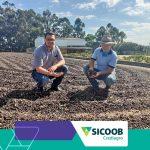 Sicoob Crediagro visita cooperados