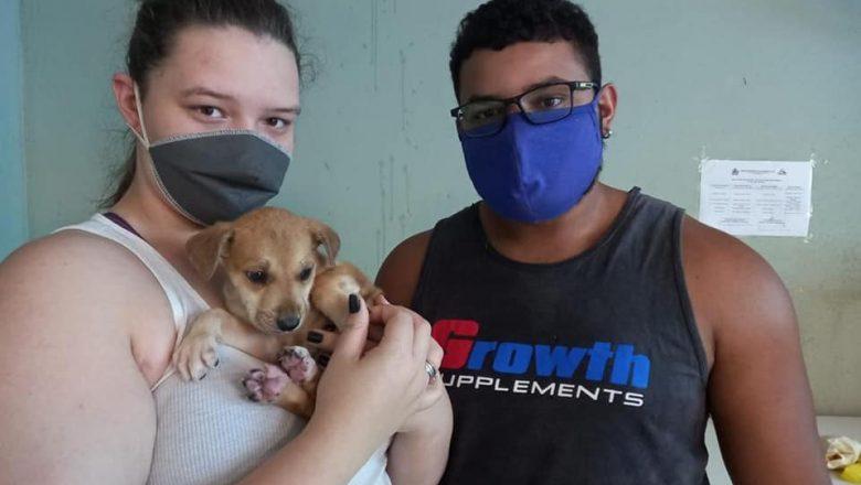 Prefeito Municipal e família realizam adoção de cão do Camil de Campos Altos.