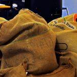 CMN destina R$ 1,3 bi para recompor perdas em cafezais após geadas